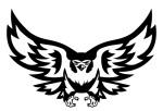 olmc-falcon