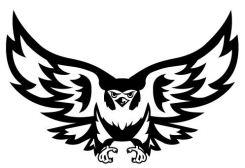 olmc falcon logo
