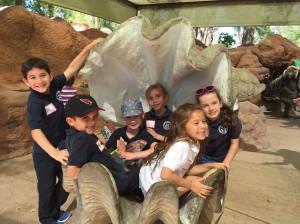 zoo 8