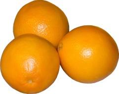 orange-207819_1920