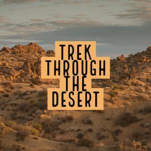 Trek Through the Desert